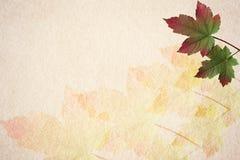 Stary papierowy jesień liść tło Zdjęcie Stock