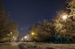 Stary park w zimie Fotografia Royalty Free