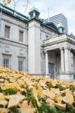 Stary piękny dziejowy budynek Obraz Royalty Free