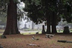Stary Pionierski cmentarz w mgle Obrazy Royalty Free