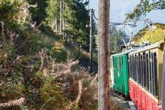 Stary pociąg pasażerski na jego sposobie Schynige Platte od Interlake zdjęcia royalty free