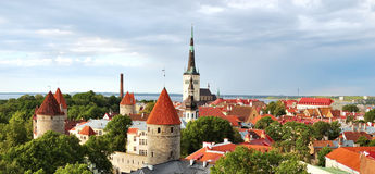 stary podeszczowy Tallinn Obraz Royalty Free