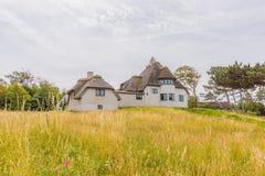 Stary pokrywający strzechą dom na żółtej łące siedziba poprzedni biegunowy badacz K obraz royalty free