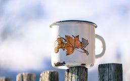 Stary przeciekający kubek i wintergarden canada zimy obraz stock