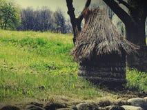 Stary pszczelarki ` s dom Zdjęcia Stock