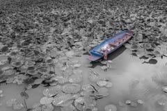 Stary rdzewiejący statek po środku basenu Zdjęcie Stock