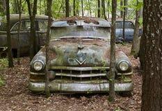 Stary, Rdzewiejący Zielonego samochód w drewnach obrazy royalty free