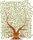 Stary rocznika drzewa wektor Zdjęcia Stock