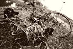 stary rower Fotografia Royalty Free