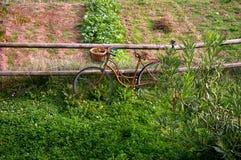 stary rower rusty Zdjęcie Stock