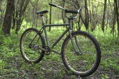 Stary rower w drewnach zdjęcie stock