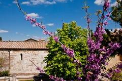 Stary rzymski kościół w ogródzie obrazy royalty free