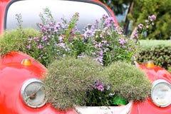 Stary samochód i pola kwiaty Fotografia Stock