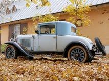 Stary samochód w jardzie który zakrywa z żółtymi liśćmi klonowymi fotografia royalty free