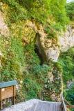 Stary schody na Świątobliwej Sava wody drodze Obraz Royalty Free