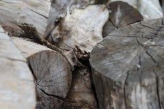 Stary siwieje rżniętego drewnianego beli zbliżenie obrazy royalty free