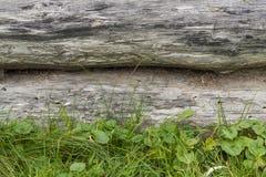 Stary surowy notuje dalej wystrój park Obrazy Stock