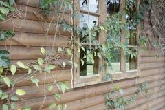 Stary szklany okno szalet, adobe rgb Fotografia Stock