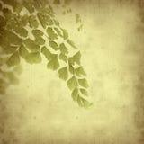 stary tło papier textured Zdjęcia Royalty Free