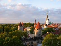 stary Tallinn miasteczka widok Zdjęcie Royalty Free