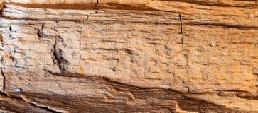 stary tekstury drewna Zdjęcia Stock