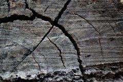 stary tekstury drewna tło Obrazy Royalty Free