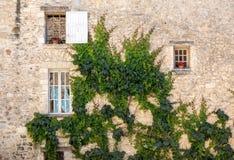 Stary tenement dom przerastający z bluszczem w Sault, Vaucluse dział w Provence obraz royalty free
