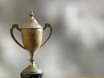 Stary trofeum Obrazy Royalty Free