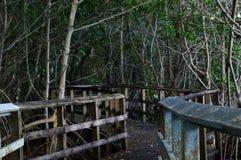 Stary tropikalny Boardwalk Zdjęcie Royalty Free