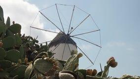 Stary wiatraczek na greckiej wyspie mykonos z kaktusem zbiory