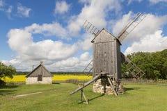 Stary wiatraczek w Angla dziedzictwa kultury centrum, Estonia Fotografia Royalty Free