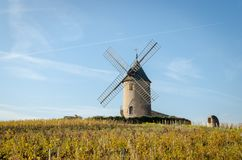 Stary wiatraczek w Beaujolais, Francja obrazy royalty free