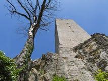 Stary wierza od kasztelu w Chorwacja zdjęcie royalty free