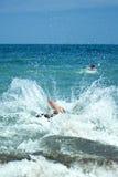 stary wody morskiej skok young zdjęcie royalty free