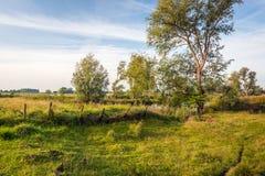 Stary wypaczający ogrodzenie w kolorowym wiejskim krajobrazie Obrazy Stock
