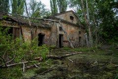Stary zalewający przerastający rujnujący zaniechany forsaken przemysłowy budynek wśród bagna po powodzi katastrofy obraz royalty free