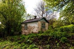 Stary zaniechany dom w?r?d g?szczy greenery obrazy stock