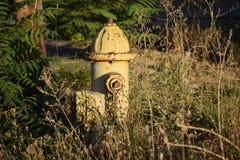 Stary zaniechany pożarniczy hydrant z rdzą Obraz Royalty Free