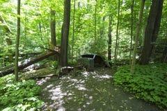 Stary zaniechany samochód w lesie obrazy royalty free
