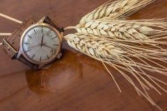 stary zegarek nadgarstek zdjęcie royalty free