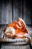Stary zestaw bawić się baseballa Fotografia Royalty Free
