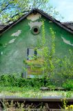 Stary zielony dom z ulistnieniem Zdjęcia Stock