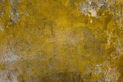 Starzejąca się brudna jaskrawa żółta betonowa ściana z pęknięciami, narysy, strugający i ciemne foremek plamy szarość i bielu sur obraz royalty free