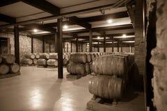 Starzejąca się fotografia stara wytwórnia win obraz stock