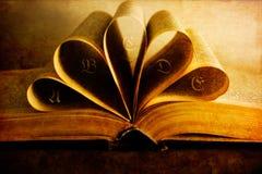 starzejąca się książka zdjęcie stock