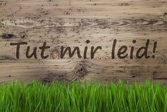 Starzejący się Drewniany tło, Gras, Tut Mir Leid Znaczy Zmartwionego Fotografia Royalty Free
