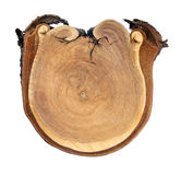 starzejący się rżnięty drewno Obraz Royalty Free