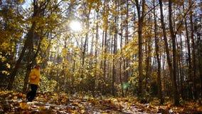Starzejący się sporty kobiety jog w jesień lesie zbiory