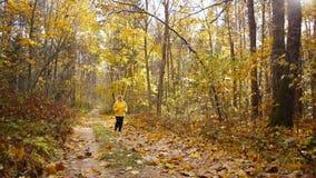 Starzejący się sporty kobiety jog w jesień lesie zdjęcie wideo