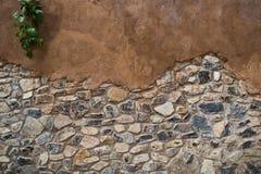 Starzejący się ulicy ściany tekstury tło z rośliną Zdjęcie Stock